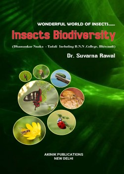 Insects Biodiversity