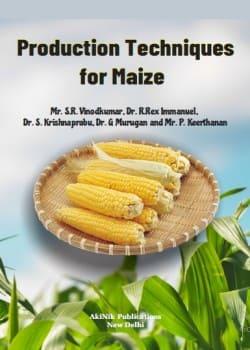 Production Techniques for Maize