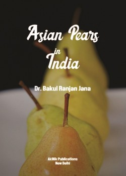 Asian Pears in India