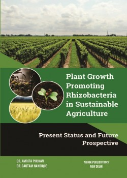Plant Growth Promoting Rhizobacteria in Sustainable Agriculture: Present Status and Future Prospective
