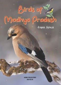 Birds of Madhya Pradesh