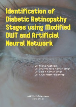 Identification of Diabetic Retinopathy Stages Using Modified DWT and Artificial Neural Network