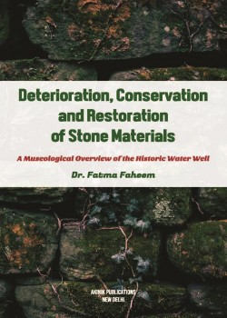 Deterioration, Conservation and Restoration of Stone Materials: A Museological Overview of the Historic Water Well