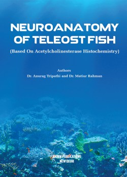 Neuroanatomy of Teleost Fish