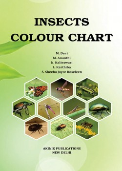 Insects Colour Chart