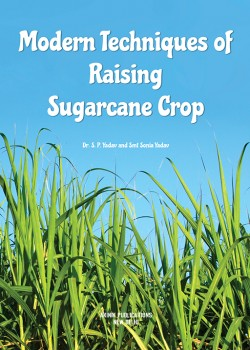 Modern Techniques of Raising Sugarcane Crop