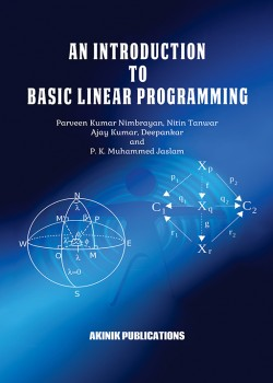An Introduction To Basic Linear Programming
