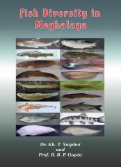 Fish Diversity in Meghalaya