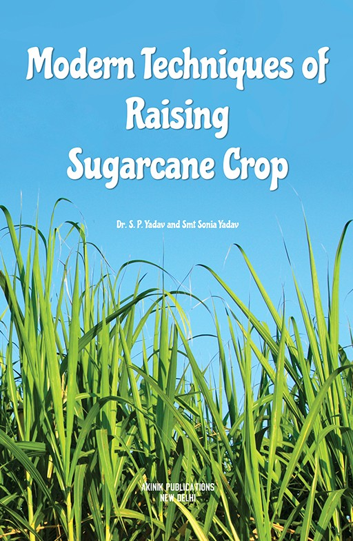 Modern Techniques of Raising Sugarcane Crop
